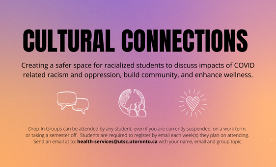 Cultural Connections Banner